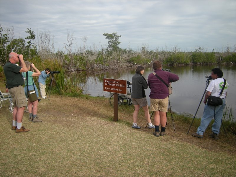 Birders in Florida, Everglades. Does anyone know the name of this pond?