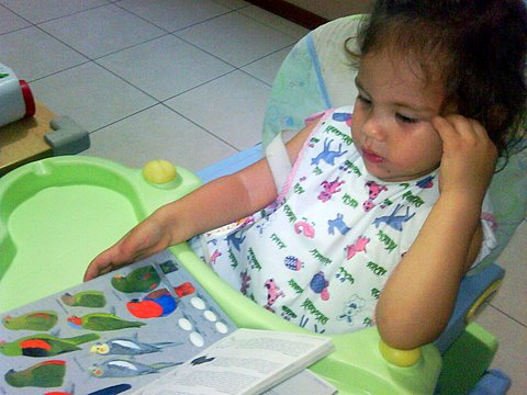 Luciana 2 years old - future nature blogger - studying the birds of Australia