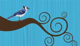 Twitter club for birders.