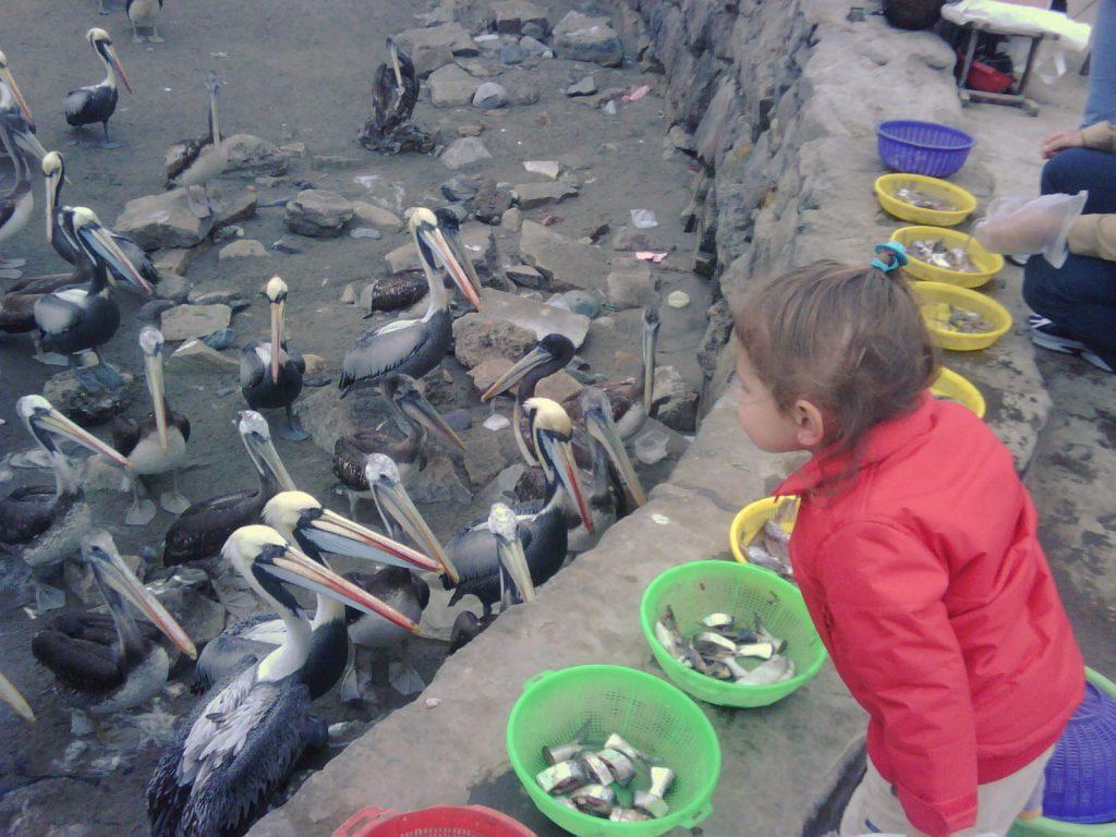 Luciana at fish market Chorillos. IMG00163-20090920-1320