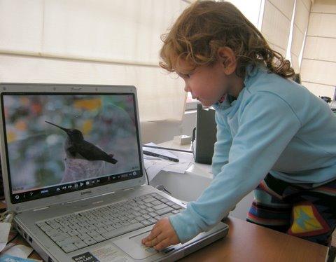 Luciana loves birds. Here watching the Hummingbird video