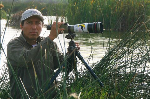 Alejandro Tello (May 31, 1968) guides many of our groups in Lima and Junin. Alejandro is a recognised photographer and well known wetland conservationist. No kids yet, an but amorous trip with partner to Colombia recently may have sown some seeds.
