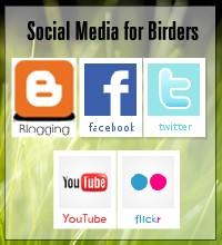 Social Media for birders