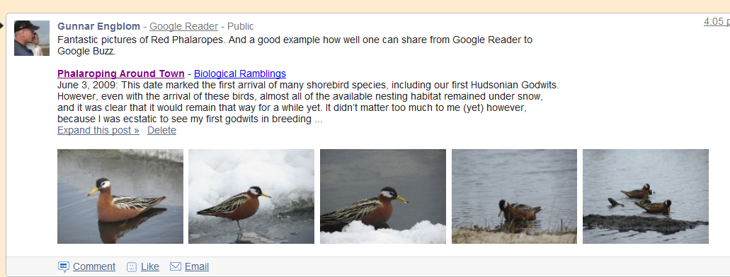 Sharing with Google Reader to Buzz