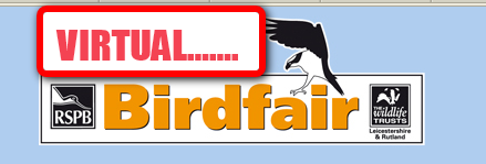 Virtual BirdFair - Why not do the birdfair on line.