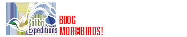 Kolibri Expeditions Blog